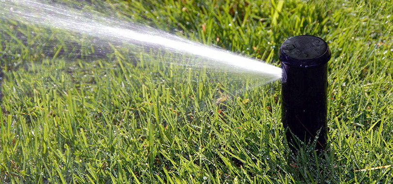 Black sprinkler spraying on green grass